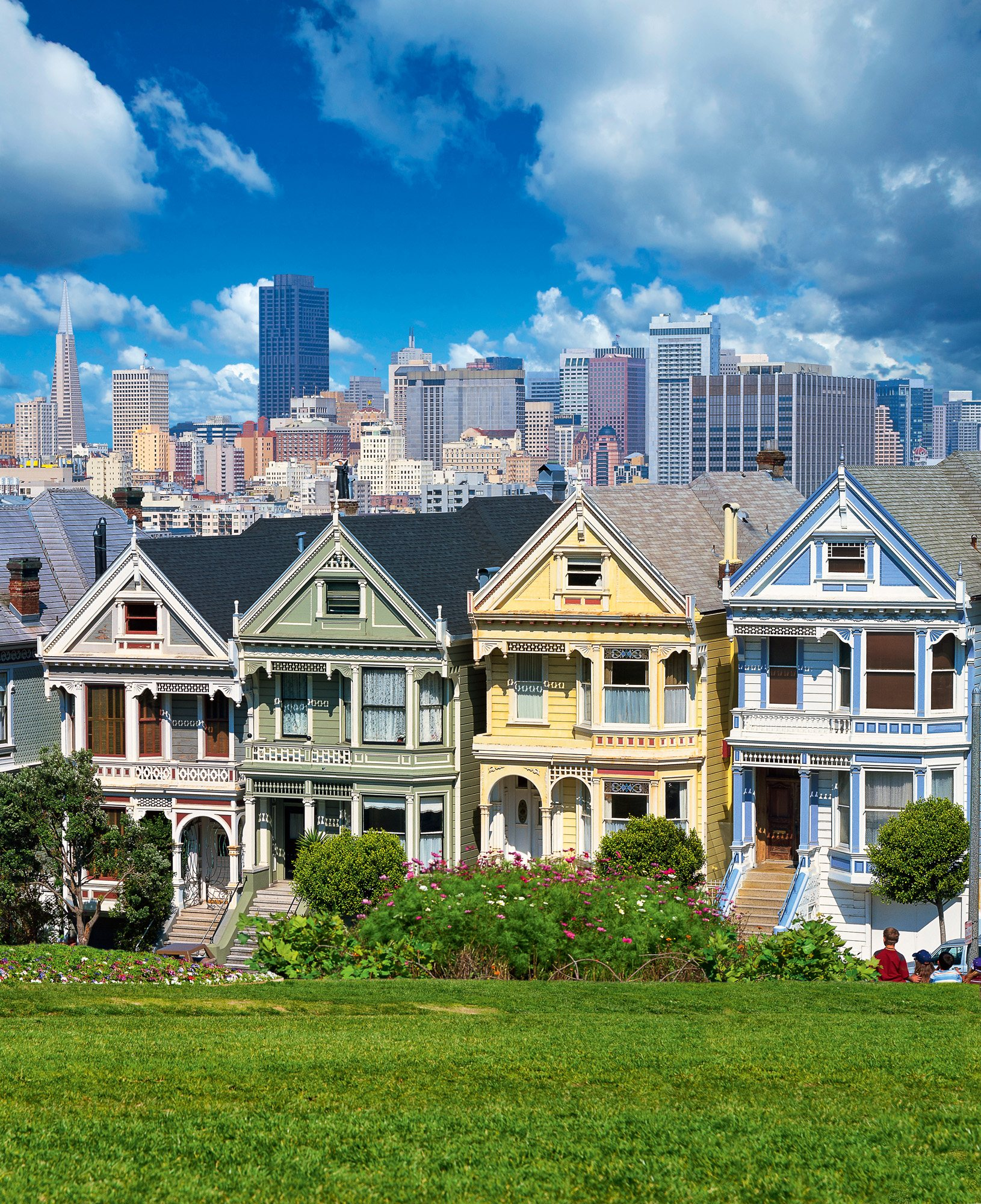 85502988130. Painted Ladies