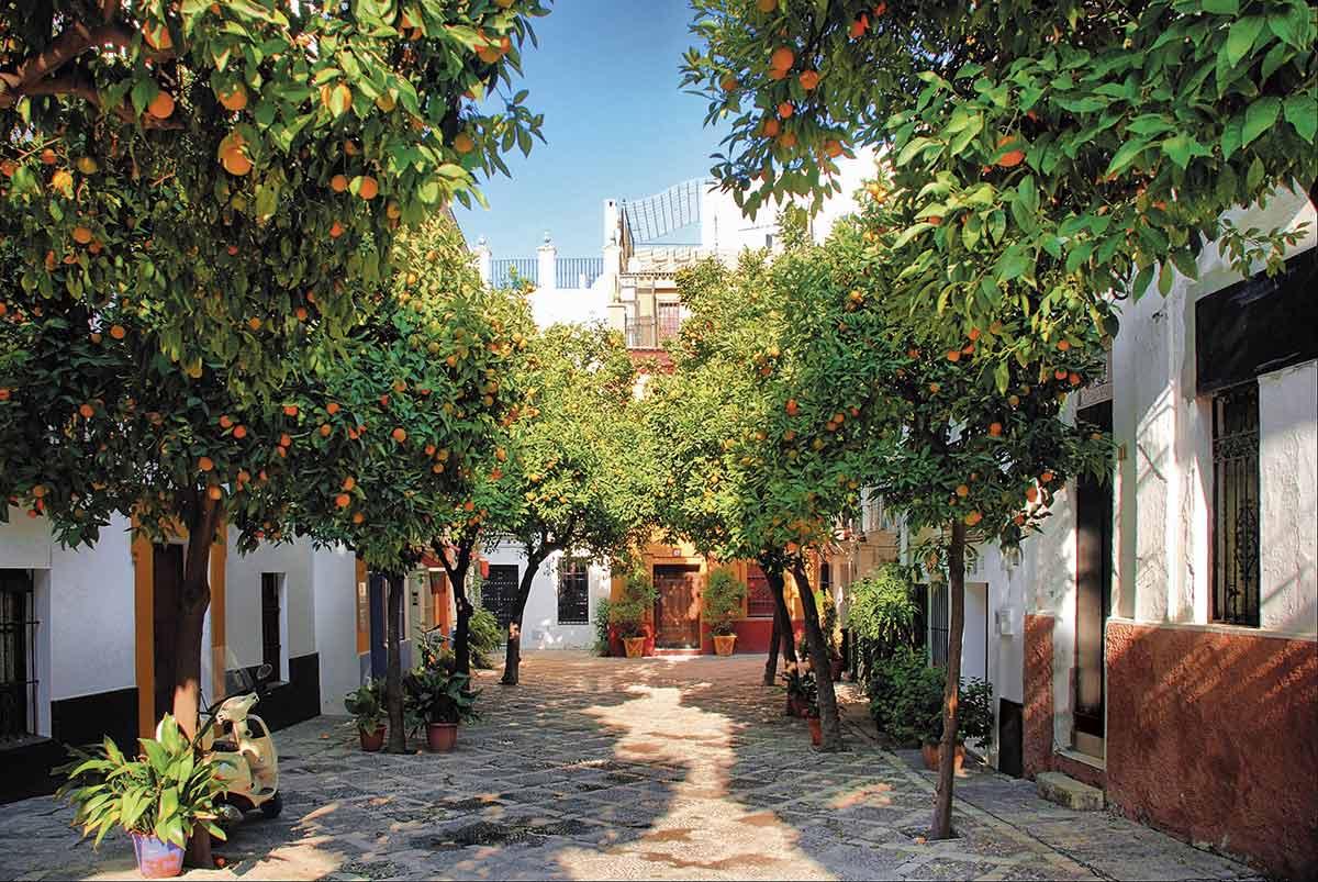 OK-DSC 7225-HDR-DP-PS. Barrio de Santa Cruz, cerca de la plaza de Doña Elvira
