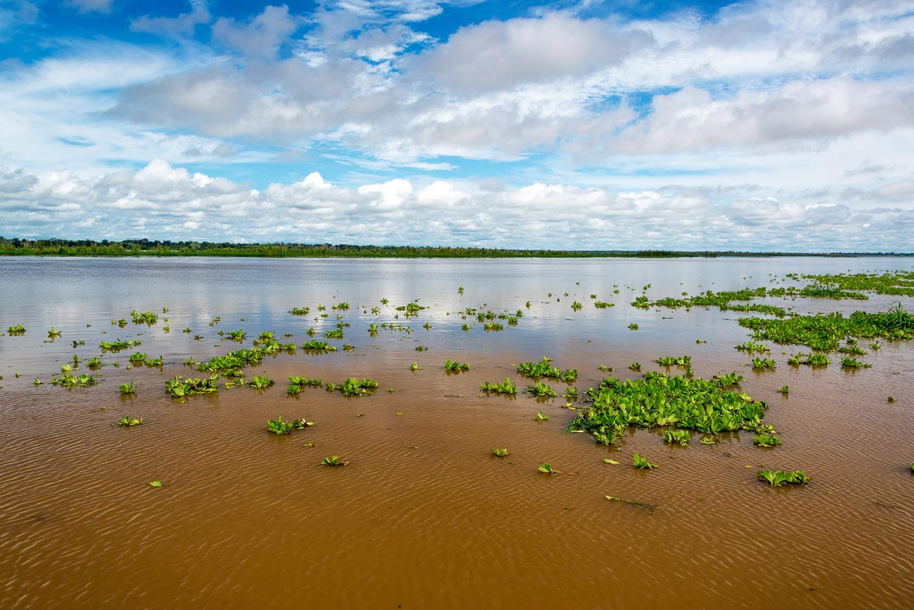 Amazona, Iquitos, Peru. Río Amazonas, a su paso por Iquitos