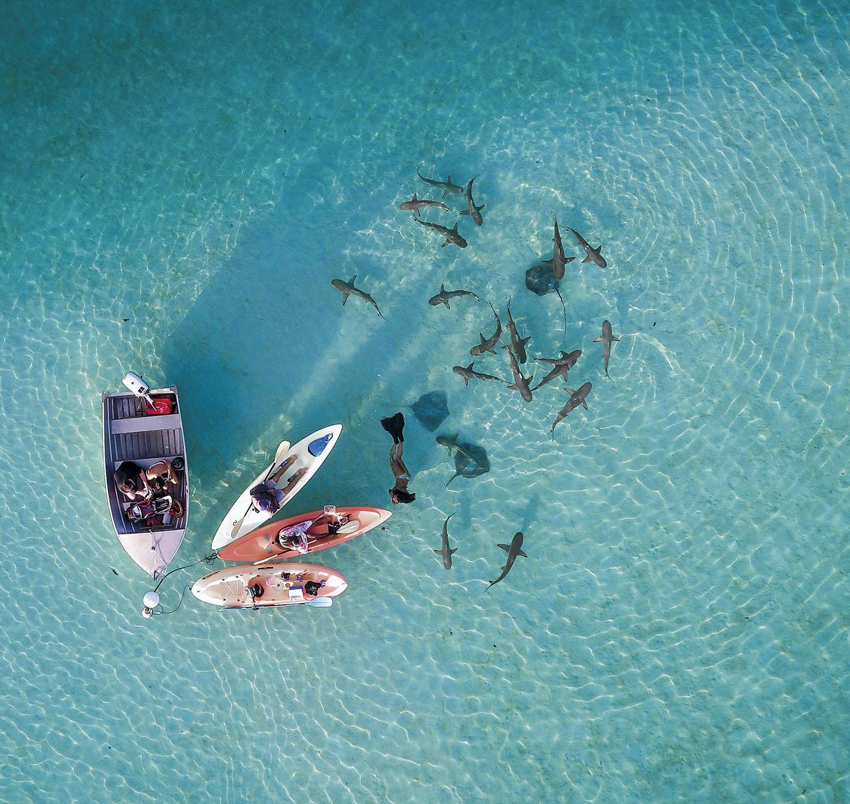 33 Fotos De Tahiti