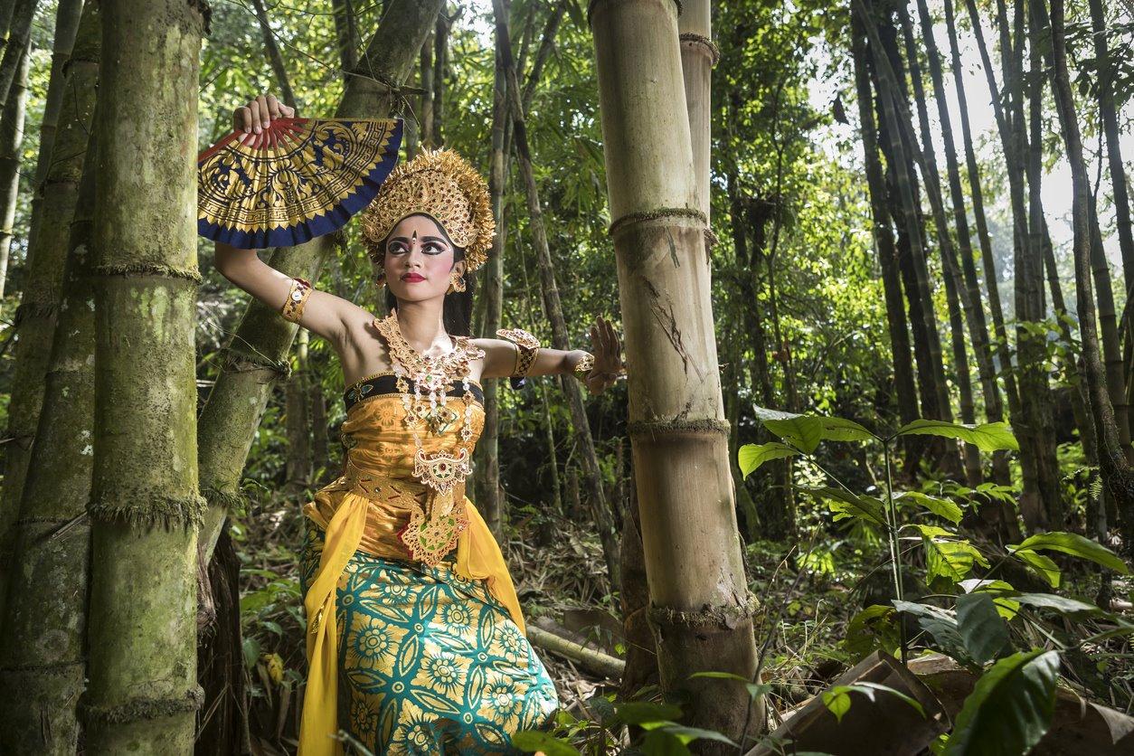 Espectáculos en la selva