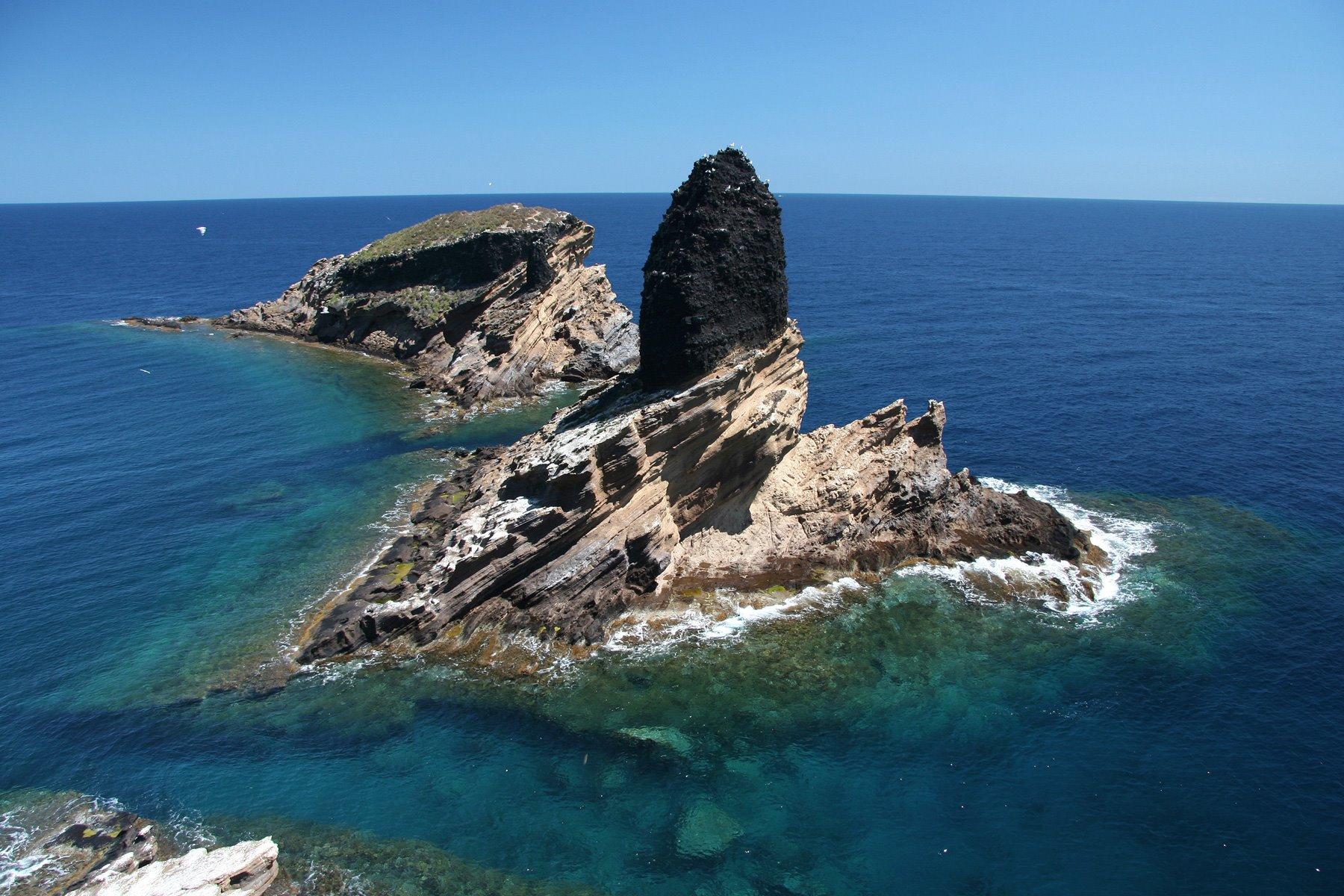 Mascarat GregorioRos. Islas Columbretes (Castellón)