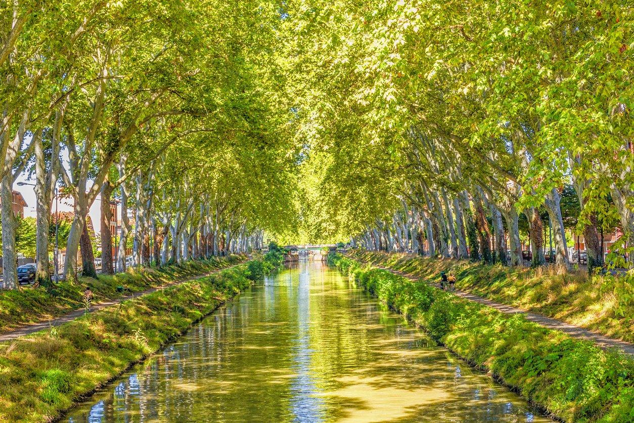 Por el Canal Du Midi y sus riberas cicloturistas. Por el Canal Du Midi y sus decenas de opciones.