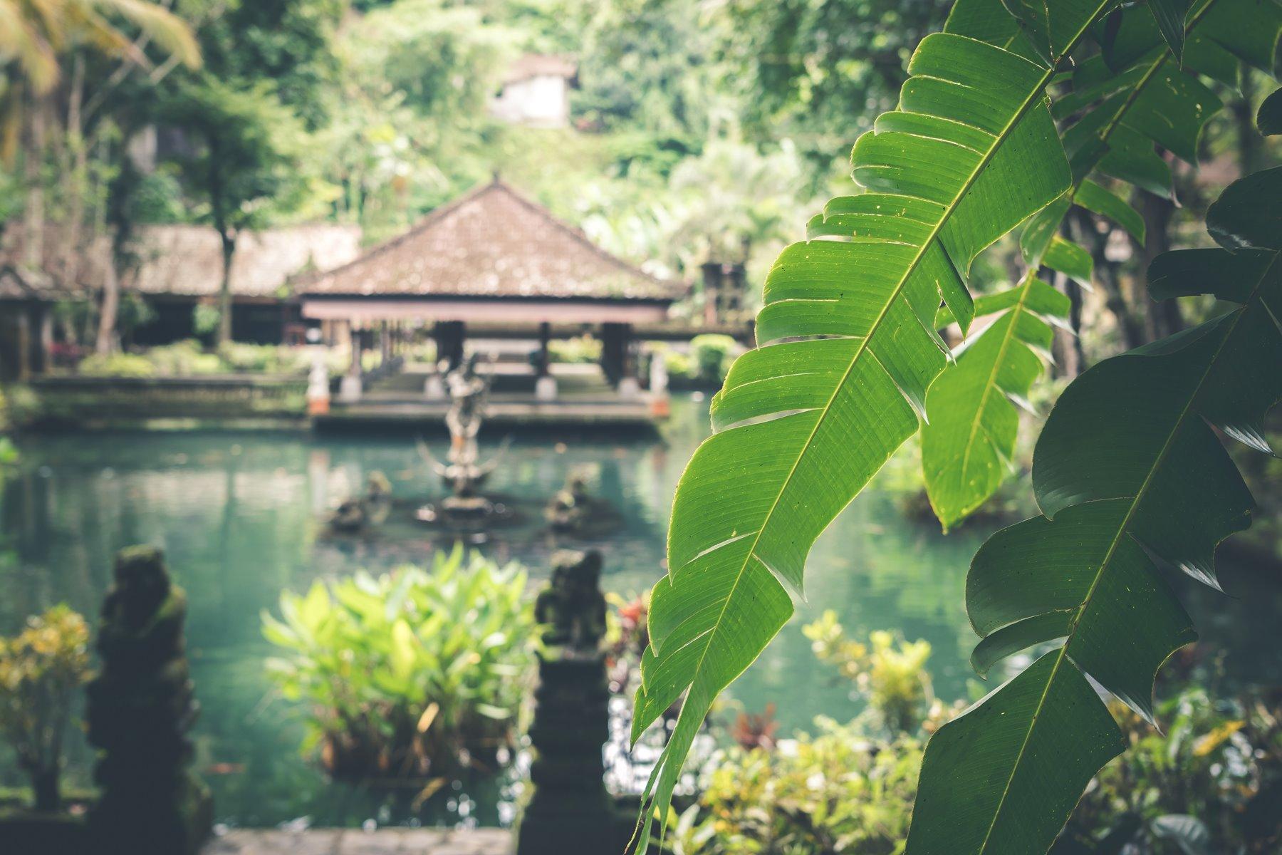 Para toda una vida en Bali