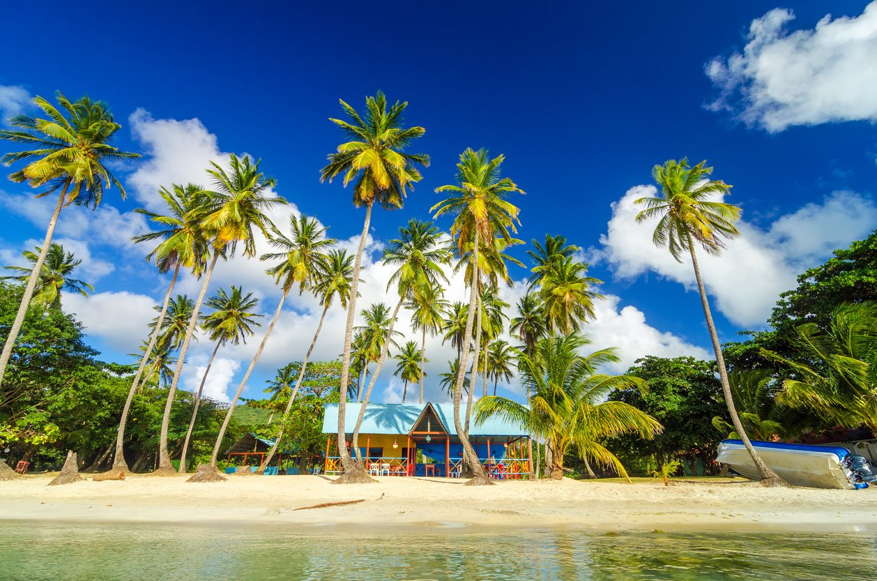 Un edén tropical y auténtico. Tropical, auténtico... y providencial