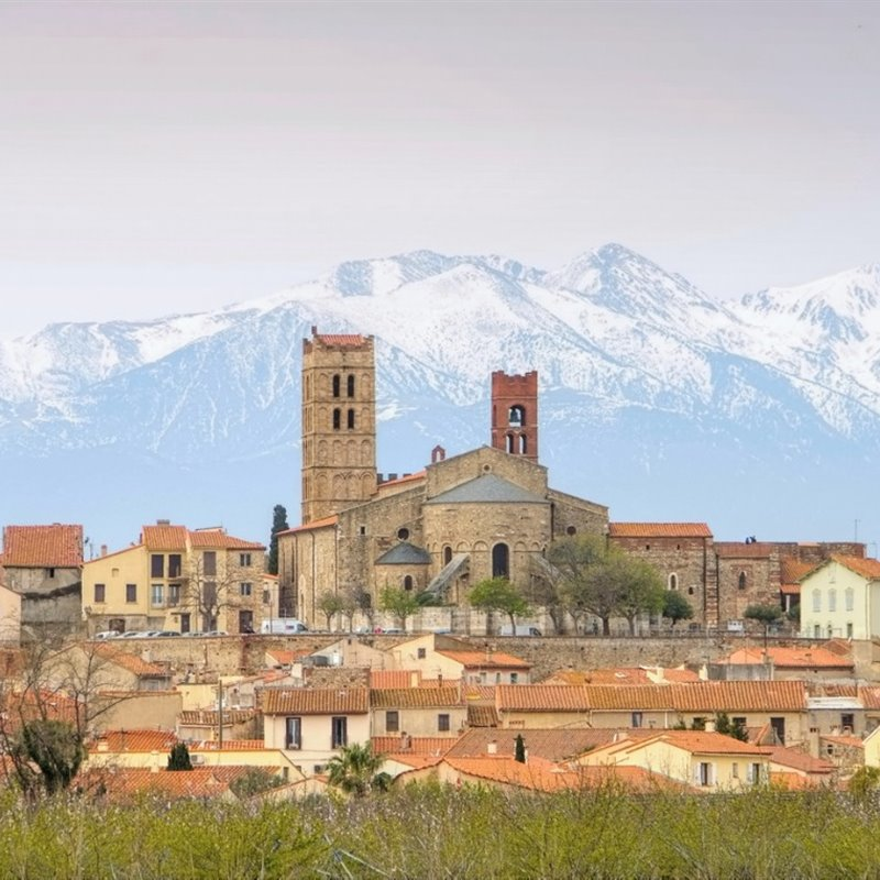 elne-cathedral-and-pic-du-canigou-picture-id627811952
