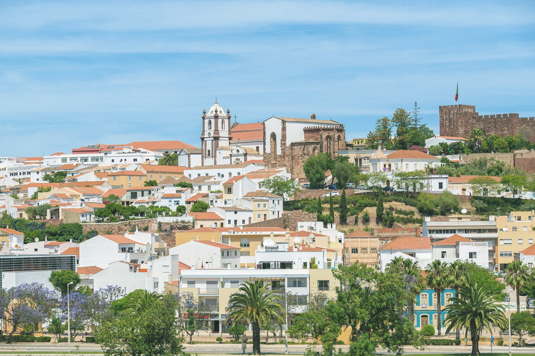 iStock-564582786. Silves