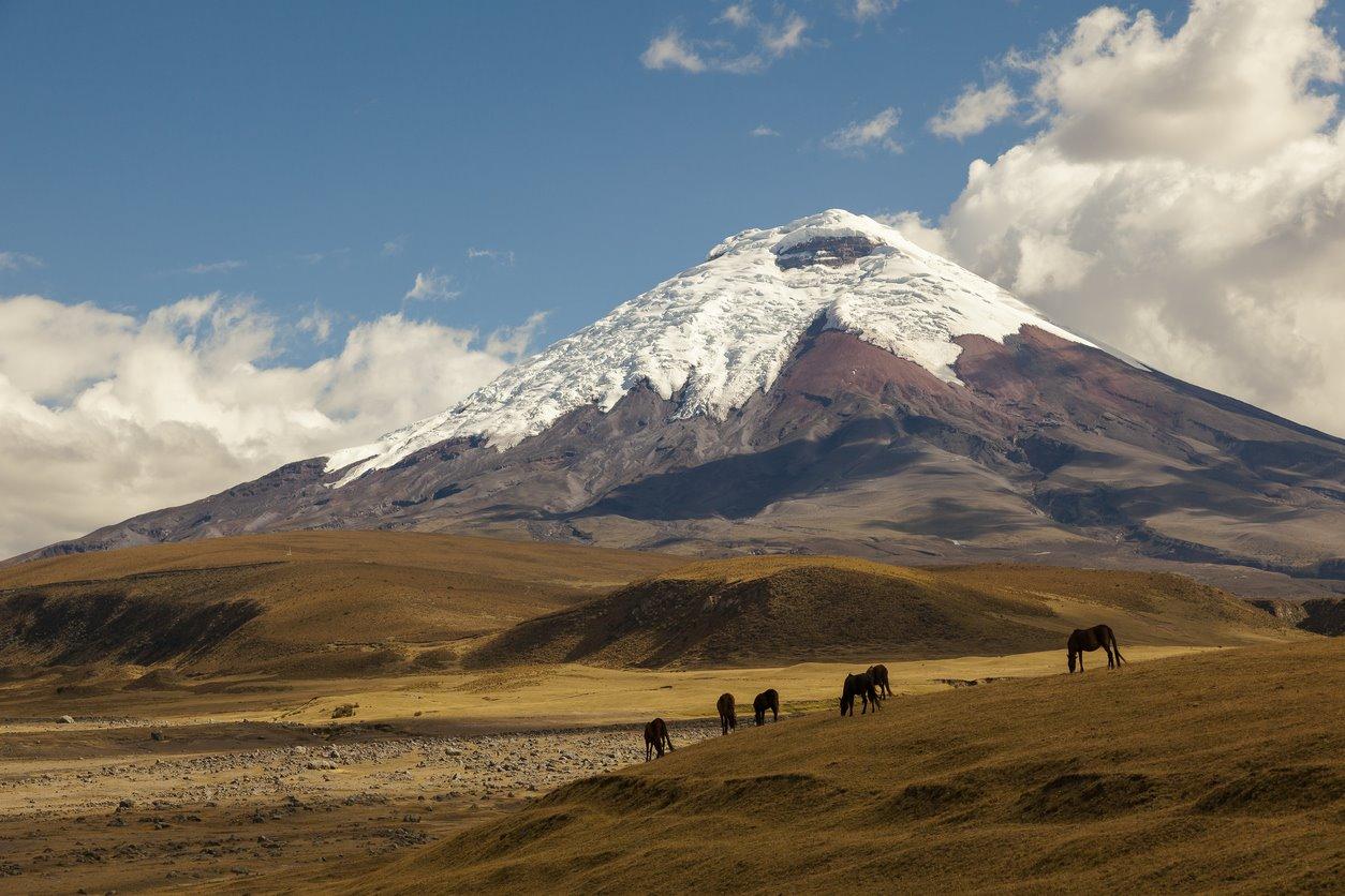iStock-469711908. Ecuador