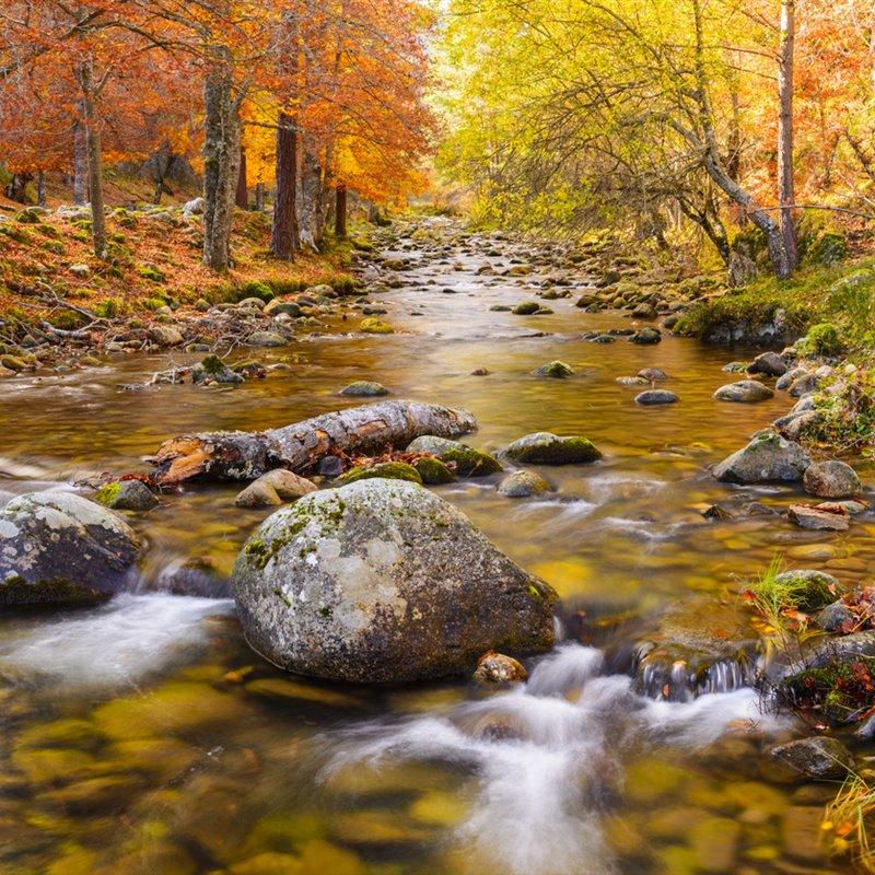 Escapadas de otoño - cover