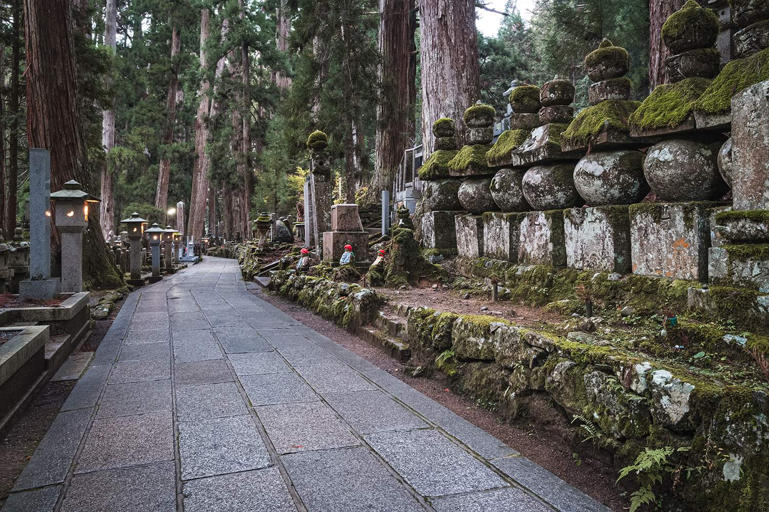 Pathway in Ancient Graveyard inside a Forest, Okunoin Cemetery, Koyasan, Japan 1591283356