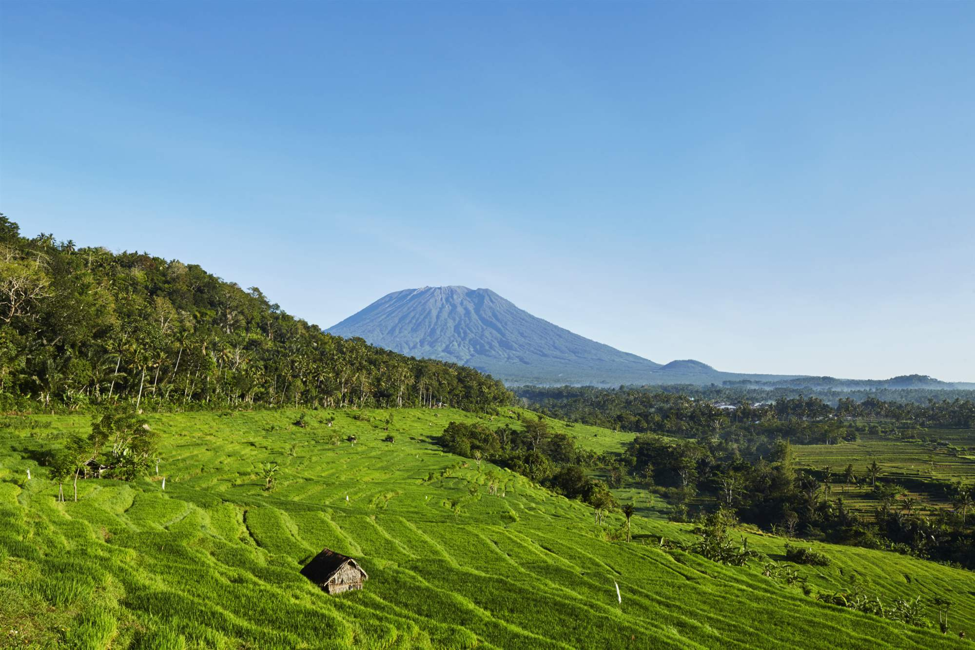 Amankila, Indonesia - Ricefields Mount Agung High Res 11474. A gusto del huésped