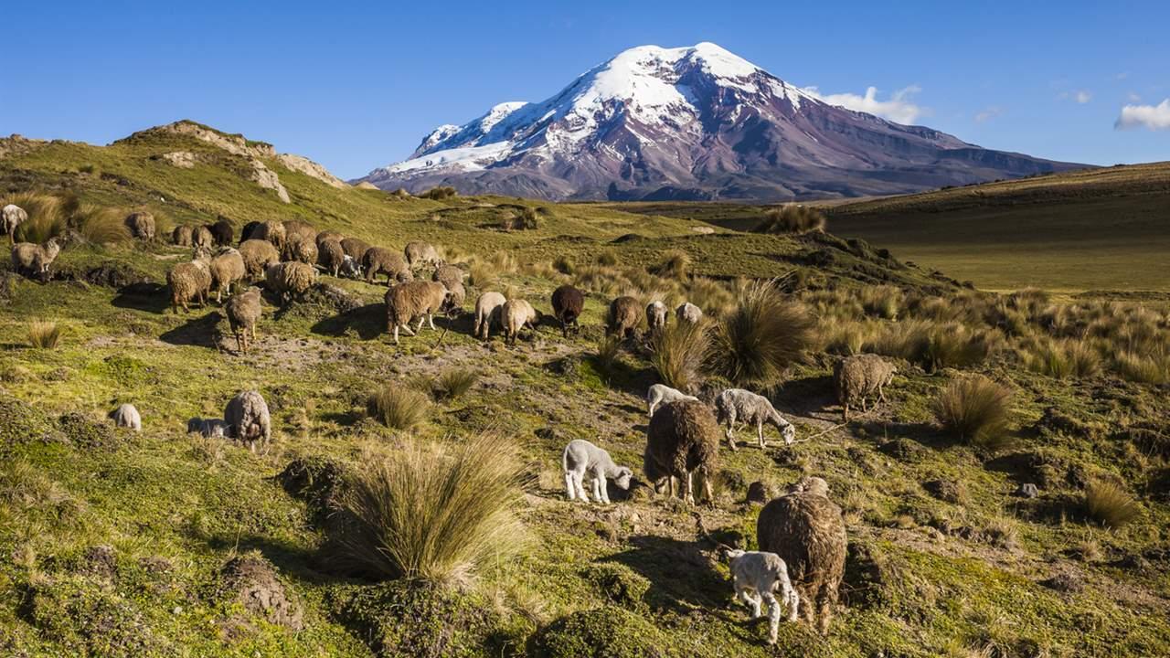 Ecuador en toda su biodiversidad