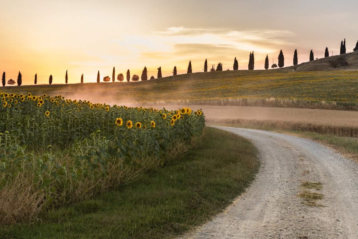 Toscana. El camino de Florencia a Rávena