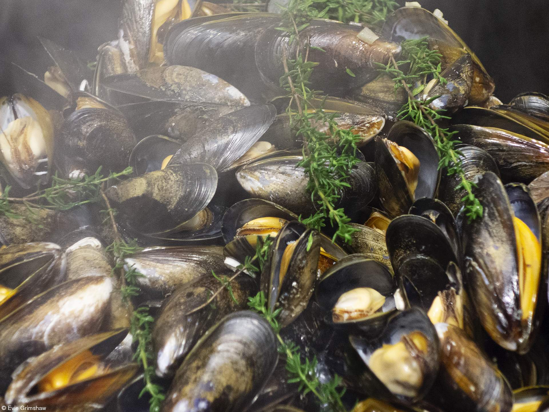 Young 10 and Under: Mussels with Steam